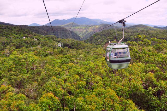 Dschungel-Gondelbahn Skyrail
